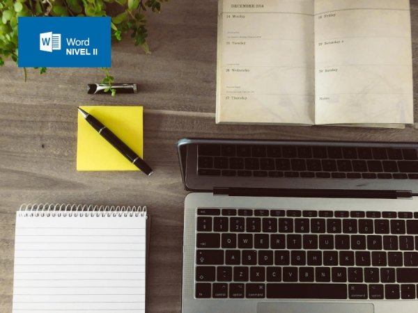 Curso de Word - Nivel II (Intermedio-Avanzado) (20 horas)